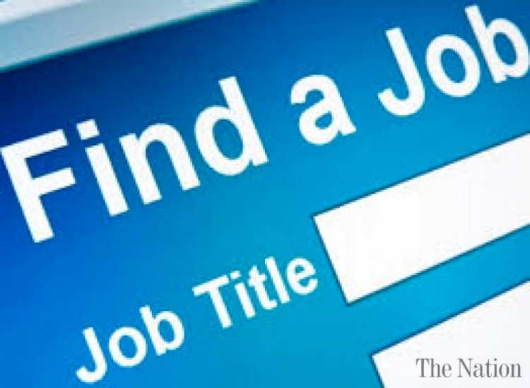 National Job Portal will be Established by Govt for all Federal and Provincial Jobs Updates.