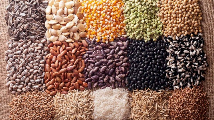 Genetically Modified (GM) Crops Opposed By Different Ministries of Pakistan