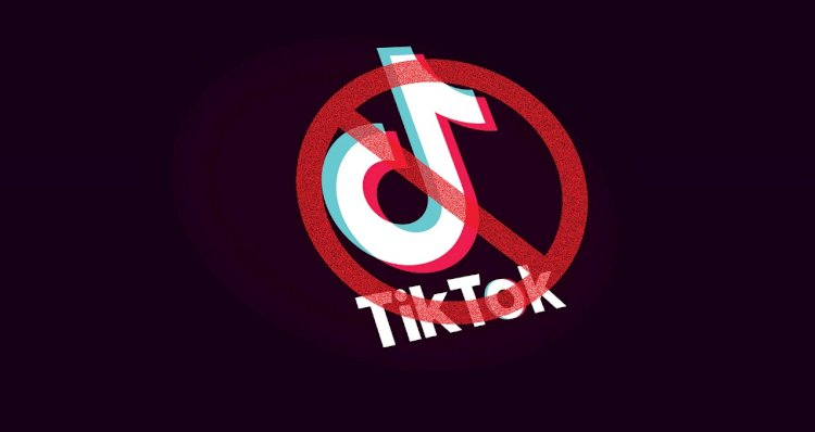 Is PTA & TikTok Collaborating For Resumption Of App's Services?